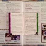 Android Netrunner - Regeln